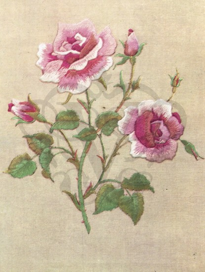 1950s Embroidered Pink Roses- jpeg download