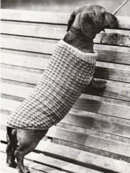 Vintage Knitting Pattern For Dachshund Dog Coat